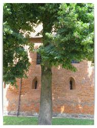 Osterode_6