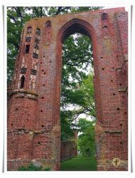 Kloster Eldena_6